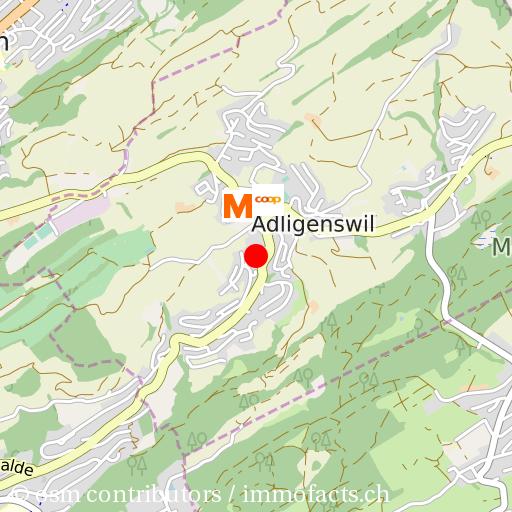Mietwohnung in Adligenswil, Wohnung mieten - mxmbers.com